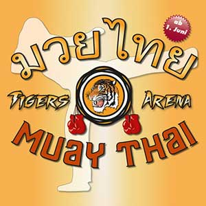 Muay Thai Fitness-Powerkurs